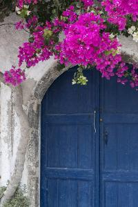 Greece, Santorini. Weathered blue door is framed by bright pink Bougainvillea blossoms. by Brenda Tharp
