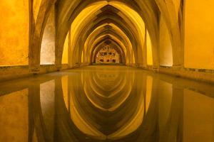 Spain, Andalusia, Seville. Alcazar Roman baths. by Brenda Tharp