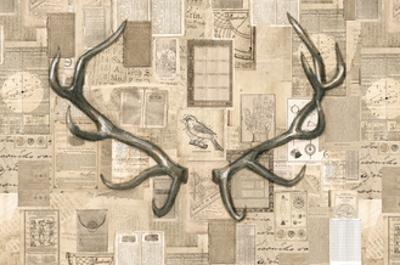 Academic Antler Illustration by Brenna Harvey