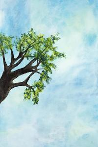 Still Out on a Limb by Brent Abe
