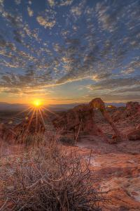 USA, Nevada, Clark County. Valley of Fire State Park. Elephant Rock by Brent Bergherm