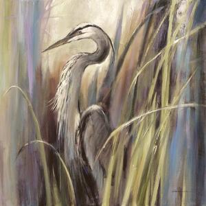 Coastal Heron by Brent Heighton