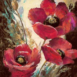 Influential Poppy by Brent Heighton