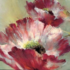 Lush Poppy by Brent Heighton