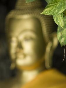 Buddha, Wat Chana Songkhram, Bangkok, Thailand by Brent Winebrenner