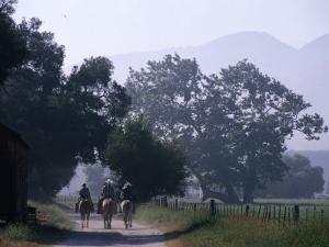 Cattlemen Riding Horses along a Road at Rancho Sisquoc, Santa Barbara, California, USA by Brent Winebrenner