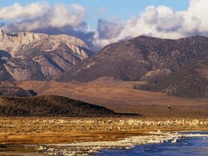 Mono Lake and High Sierra at Sunrise, Mono Lake, California by Brent Winebrenner