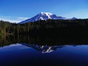 Mt. Rainier Reflected in Reflection Lake, Mt. Rainier National Park, USA by Brent Winebrenner