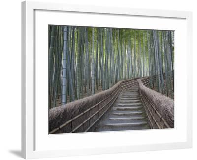 Stairway Through Bamboo Grove Above Adashino Nembutsu-Ji Temple