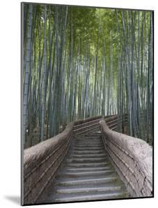 Stairway Through Bamboo Grove Above Adashino Nembutsu-Ji Temple by Brent Winebrenner