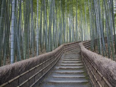 Stairway Through Bamboo Grove Above Adashino Nembutsu-Ji Temple by Brent Winebrenner
