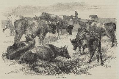Breton Cattle-Harrison William Weir-Giclee Print