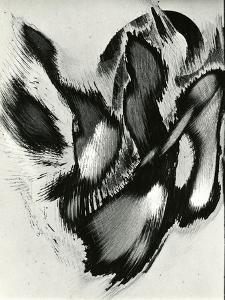 Abrasions, California, 1977 by Brett Weston