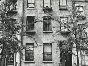 Apartment Building, New York, 1944 by Brett Weston