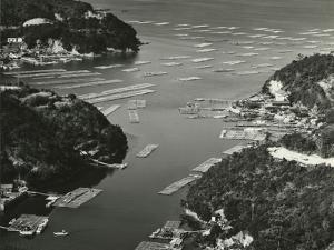 Bay, Japan, 1970 by Brett Weston