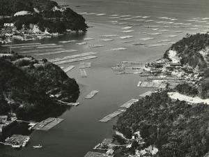 Bay, Japan, 1970 by Brett Weston