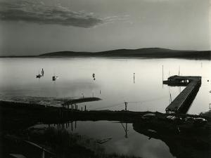 Bodega Bay, California, 1956 by Brett Weston