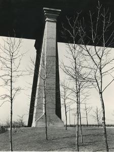 Bridge Support and Trees, New York, 1946 by Brett Weston