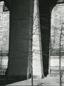 Bridge Support and Trees, New York, c. 1940 by Brett Weston
