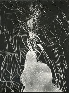 Broken Car Window, California, 1937 by Brett Weston