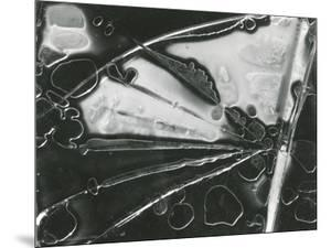 Broken Glass, 1954 by Brett Weston