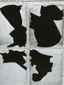 Broken Glass, c. 1970 by Brett Weston