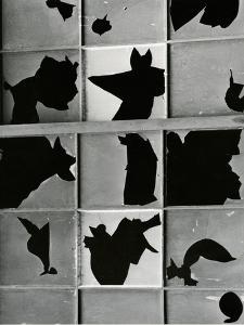 Broken Window, c. 1970 by Brett Weston