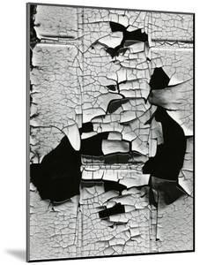 Cracked Paint, 1971 by Brett Weston