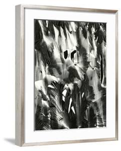 Cracked Plastic Paint, Garrapata, 1955 by Brett Weston