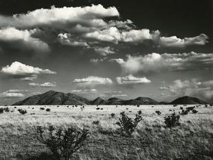Desert Landscape, New Mexico, 1971 by Brett Weston
