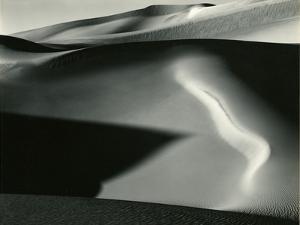 Dune, 1954 by Brett Weston