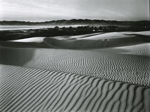 Dune, c. 1950 by Brett Weston