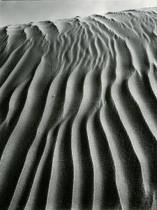 Dune, Oceano, 1934 by Brett Weston