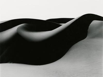 Dune, Oceano, 1984