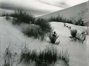 Dune, White Sands, New Mexico, c. 1940 by Brett Weston