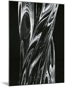Glass, 1981 by Brett Weston