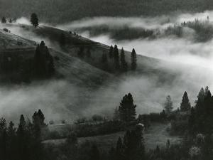 Landscape and Fog, 1971 by Brett Weston