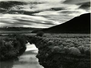 Landscape, Oregon, 1975 by Brett Weston
