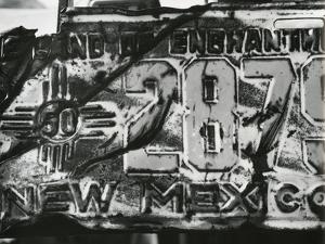License Plate, 1975 by Brett Weston