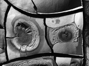 Mud Cracks, 1976 by Brett Weston
