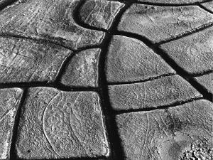 Mud Cracks, 1977 by Brett Weston