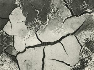 Mud Cracks, Salinas Valley, California, 1955 by Brett Weston