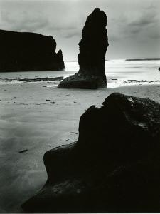 North Coast, California, 1957 by Brett Weston