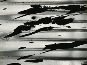 Paint Splatter, Oregon, 1972 by Brett Weston