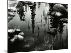 Pond, High Sierra, 1963 by Brett Weston