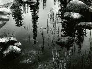 Pond, High Sierra, 1963 by Brett Weston