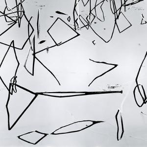 Reeds, Japan, 1970 by Brett Weston