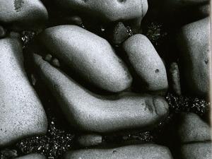 Rock and Pebbles, c. 1965 by Brett Weston