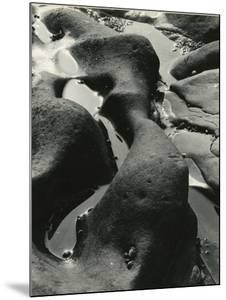 Rock and Water, Point Lobos, California, 1934 by Brett Weston