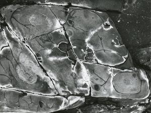 Rock Formation, 1970 by Brett Weston